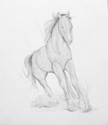 Step 3 How To Draw a Horse