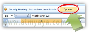 Gambar: Mengatur opsi untuk penggunaan makro