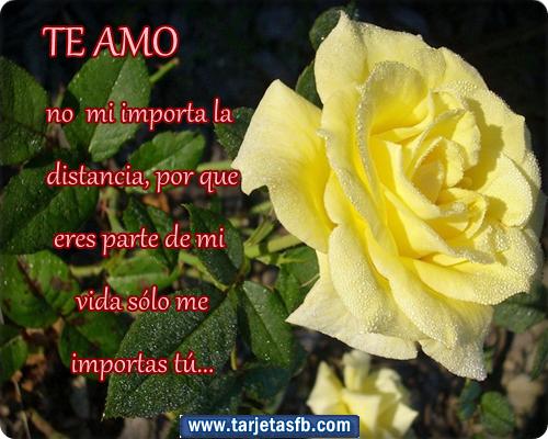 Tarjetas y postales con frases de amor para facebook  - Tarjetas De Frases De Amor