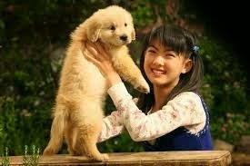 Cara Merawat Anjing Peliharaan Yang Baik Dan Benar