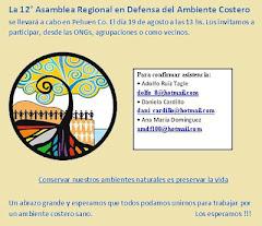 12va. asamblea regional, 18 y 19 de agosto 2012, en pehuen có