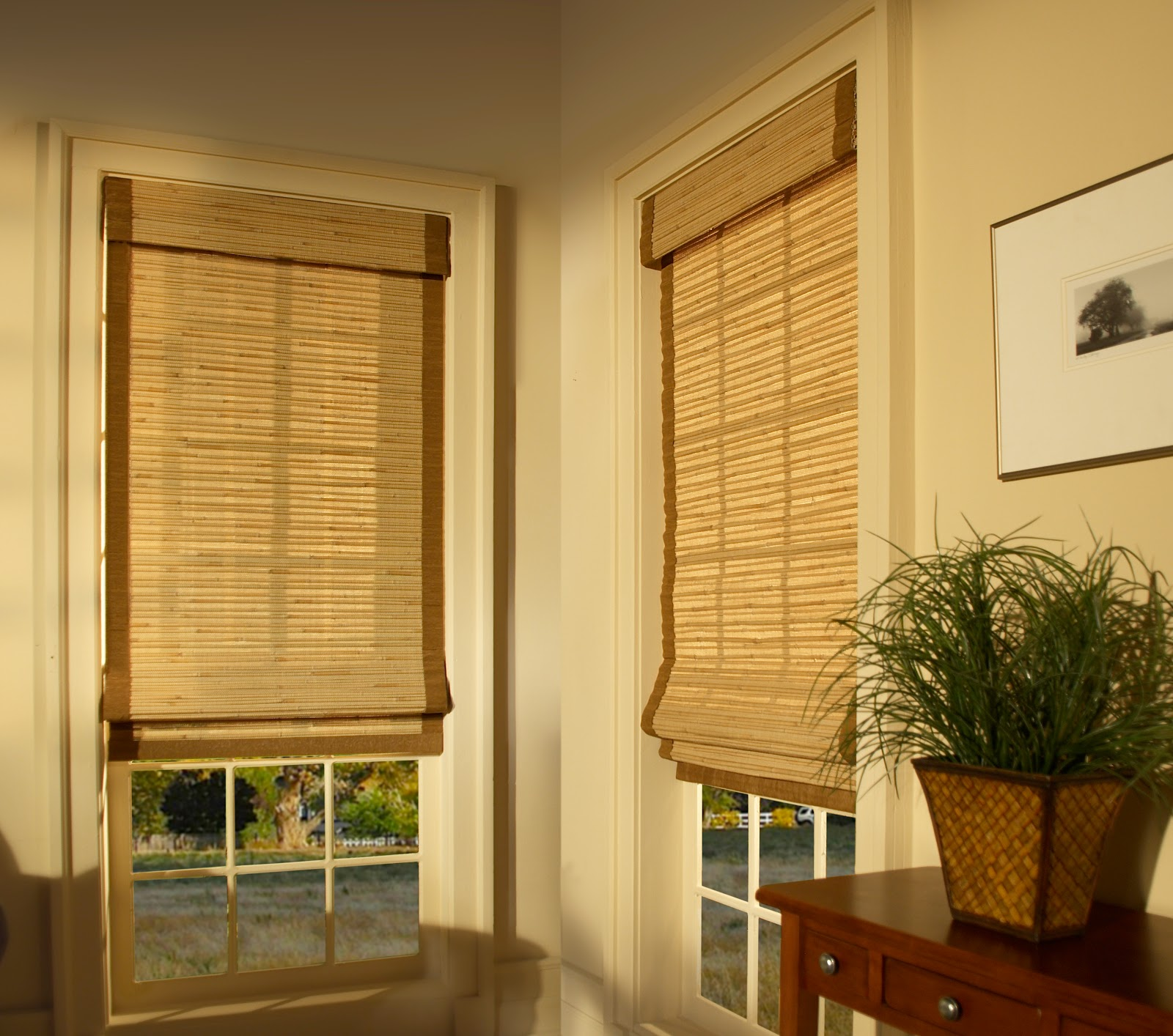 youngblood interiors clean simple window treatments