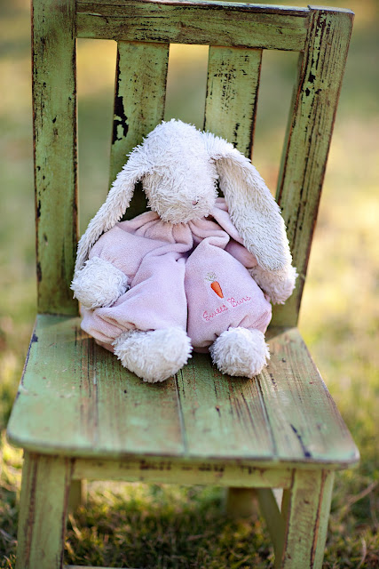 Stuffed bunny posed on baby chair in Tucson park