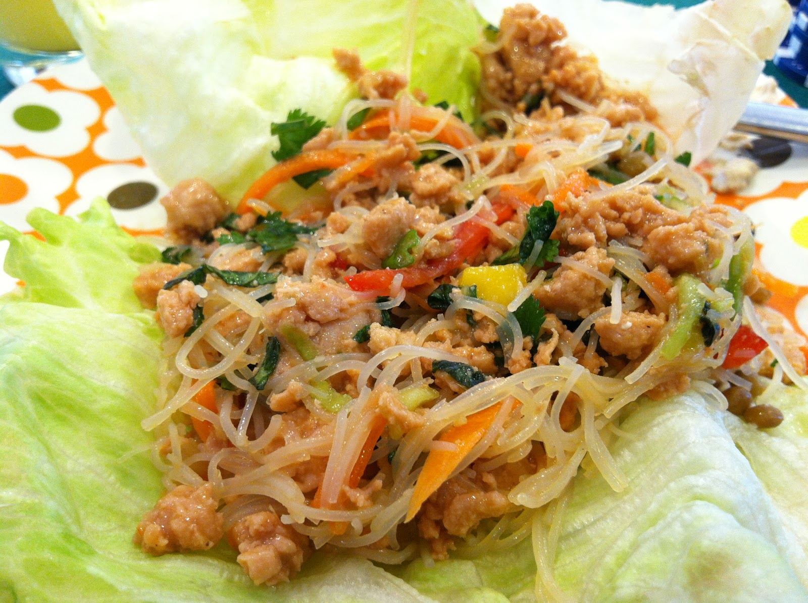 ... Nicole's Time to Eat! Blog: Thai lemongrass chicken in lettuce cups