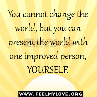 You cannot change the world