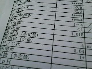 写真:2011年11月7日の尿と血液の検査結果