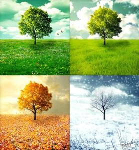 Perubahan Musim