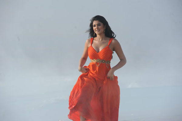 Deeksha Seth Movie Pics 5