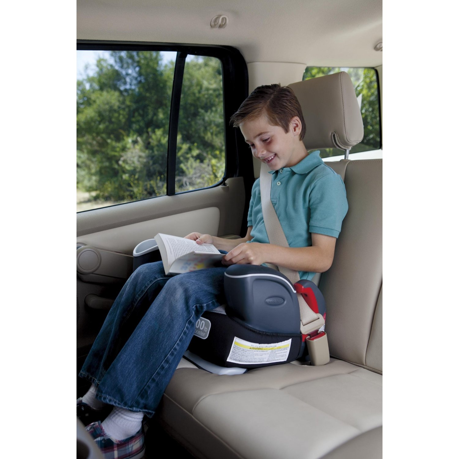 safety harness with booster seats safety get free image about wiring diagram. Black Bedroom Furniture Sets. Home Design Ideas
