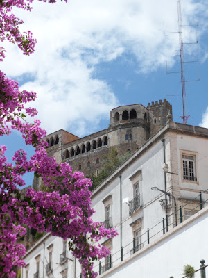 The hill top castle in floral Leiria