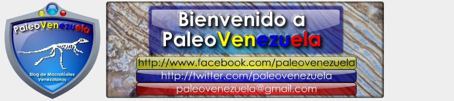 Paleontología en Venezuela