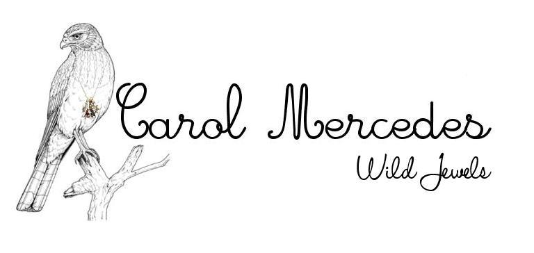 Carol Mercedes