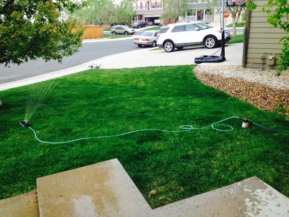 The Herban Farmer Diy Pet Safe Lawn Fertilizer Does It Work