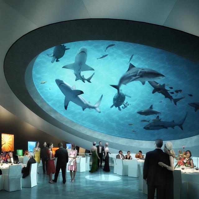 Miami tourism miami attractions miami hotels miami for Best fishing spots in miami