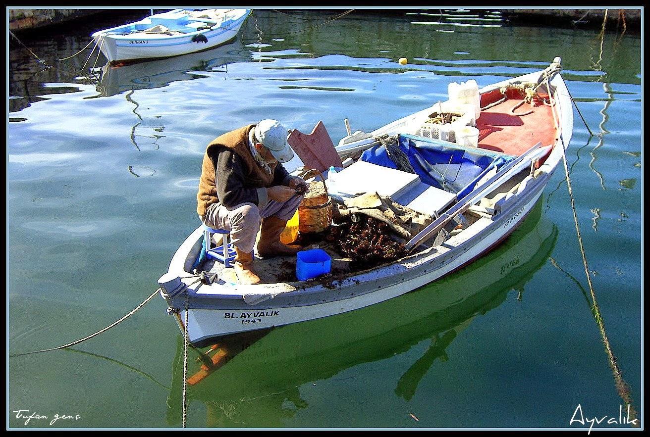 Balıkçı/Ayvalık