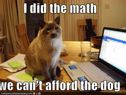 funny-pictures-cat-did-the-math-and-you-cannot-afford-the-dog.jpg