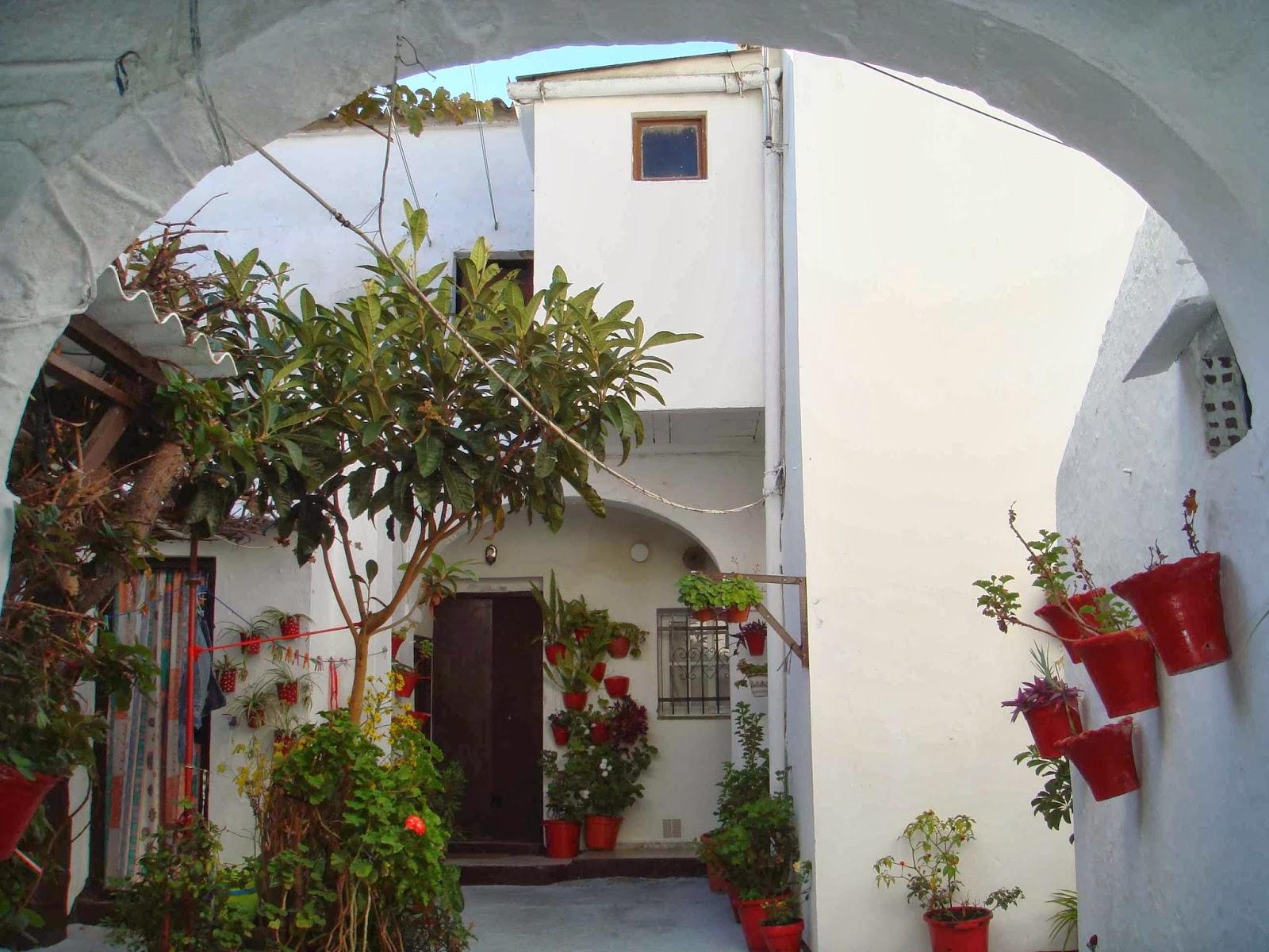 Abre tu patio a la red patios - Patios con macetas ...