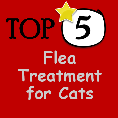 Best Treatment For Cat Fleas In The House