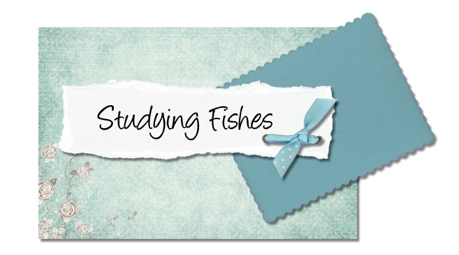 Studying Fishes