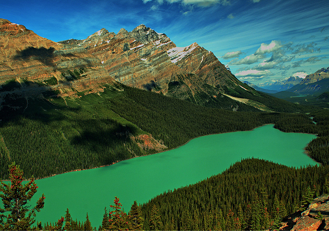 Peyto Lake by Aubrey Stoll