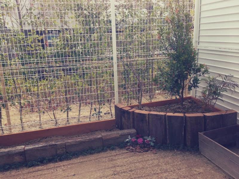 枕木 オーストラリア ユーカリ 2014
