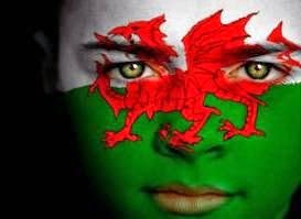 wales flag for sale