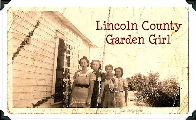 Lincoln County Garden Girl