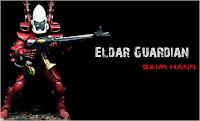 Guardian de los Eldars para Warhammer 40000 con los colores del mundo de Saim-Hann