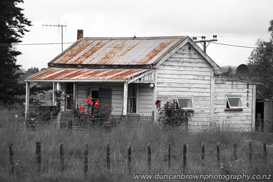 My World - Kiwi cottage with colour, in Waipawa photograph
