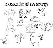 ANIMALES DE LAS REGIONES DEL PERÚ. Publicado por manesra en 12:19 (animales de la costa)