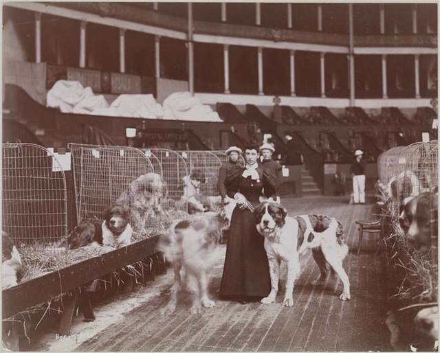 Old Photos Of Madison Square Garden Ii From 1890 1925 Vintage Everyday