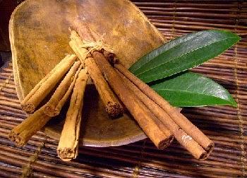 Obat Herbal Fertigo