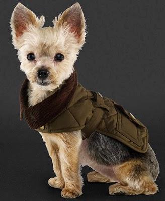 abrigo perro Ralph Lauren