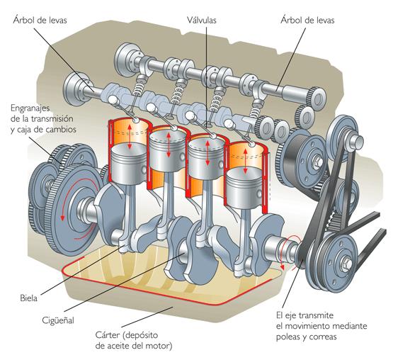 Motor on Shovelhead Oil Filter