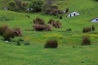 Ideas de Casas Ecosostenibles, Naturaleza y Modernidad Fusionadas en Viviendas Originales