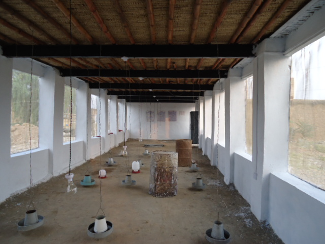 Poultry Farm Construction : Construction of poultry farm sararogha south