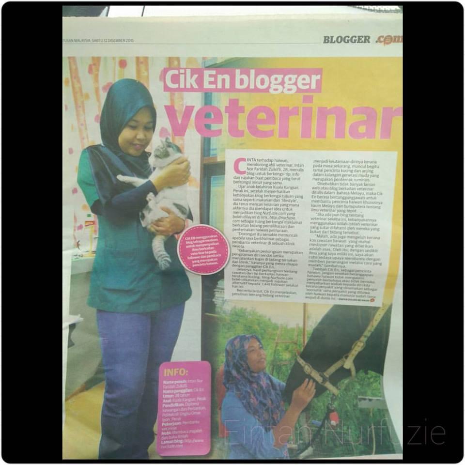 Utusan Malaysia (12/12/15)