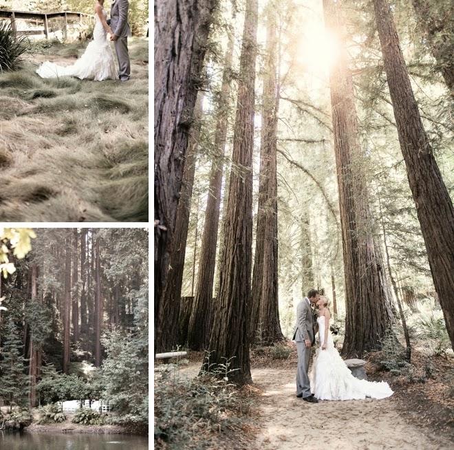 Cásate en un Bosque.