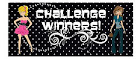 Winnaar 25-02-2016