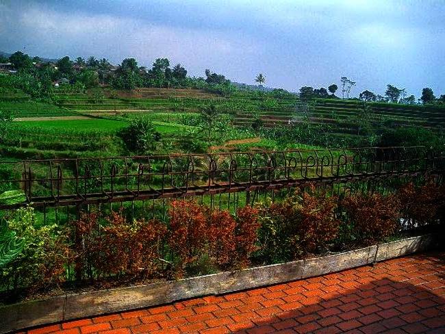 Tempat Outbound Bogor Puncak, Cansebu Resort