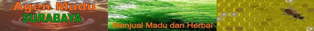 agenmadusurabaya |AGEN MADU SURABAYA |AGEN MADU DI SURABAYA | AGEN MADU MURNI SURABAYA | MADU ASLI