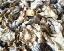 Resep Kerupuk Ikan Tuna Renyah