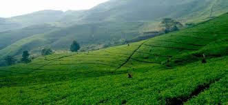 Persebaran Sumber Daya Alam Wilayah Daratan Indonesia