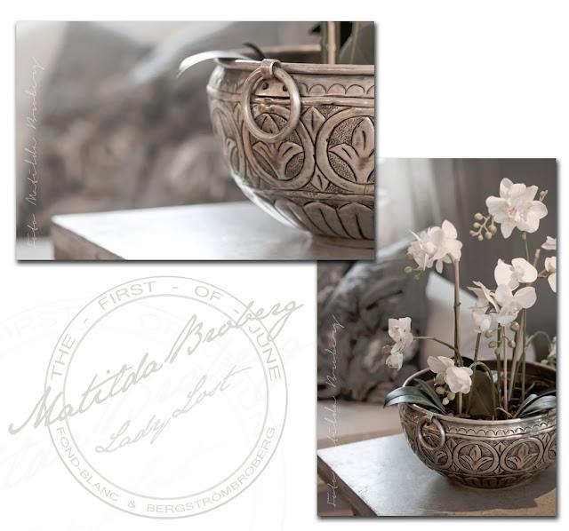 matilda broberg fotograf ladylost metallkruka orkidé NORDAL marrakech