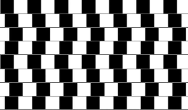Brain Illusions