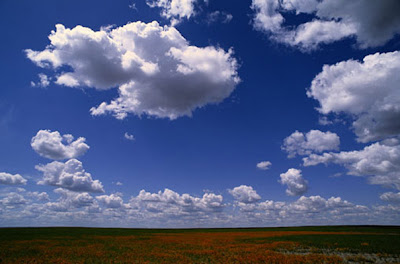 Clouds Above Field photo wall mural