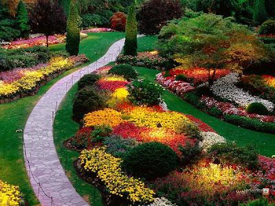 حديقة كيوكينهوف Keukenhof أكبر و أجمل حديقة أزهار في العالم. 2