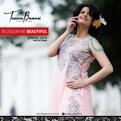 taana baana collection 2014