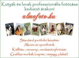 Fotós weboldalam
