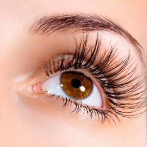 Loss eyelashes causes prevention treatment of loss eyelashes